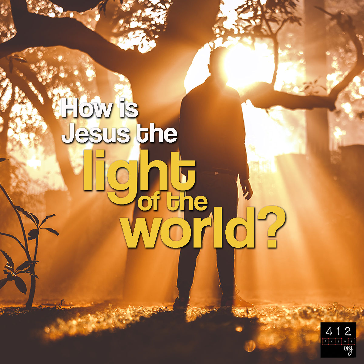 What does it mean that Jesus is the 'Light of the World' (John 8:12)? |  412teens.org