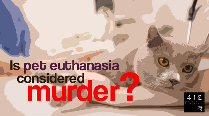 What Does The Bible Say About Pet Euthanasia 412teens Org